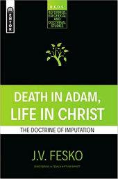 http://www.biblicaltrinitarian.com/2018/05/death-in-adam-life-in-christ-doctrine.html