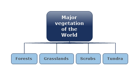 Major Vegetation of the World