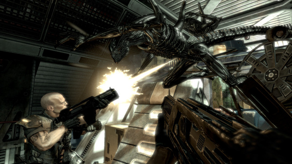 Aliens vs Predator PC Full Español