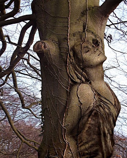 tree in human shape