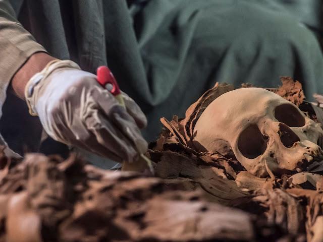 An Egyptian labourer unearthing mummies