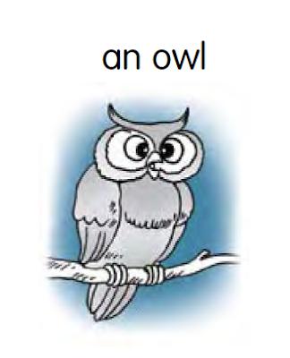 Singular Noun Dalam Bahasa Inggris