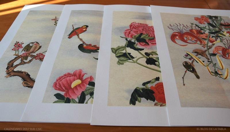 Láminas incluídas en calendario 2017 Real Jardin Botánico Colección Van Berkhey