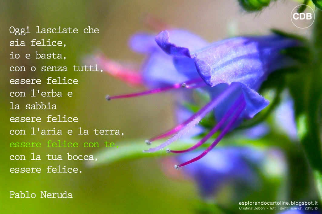 Auguri Matrimonio Neruda : Cartolina citazione pablo neruda eco postcard gadget ecologico