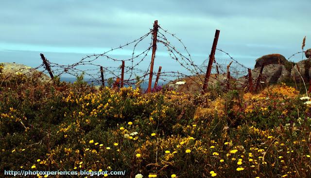 Ruta senderista / Walking route. Pedras Negras. O Grove. Galicia. Spain.