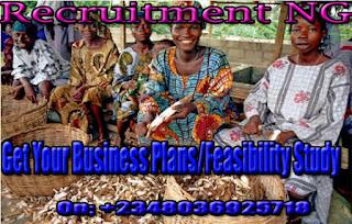 Cassava farming business| Business Startup | Feasibility Study