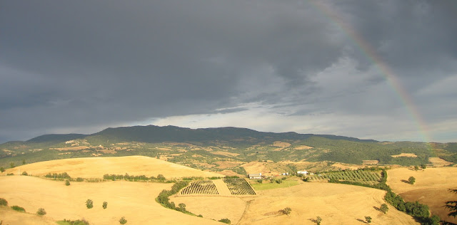 Rainbow over our neighbor's Tuscan vineyard and olive grove