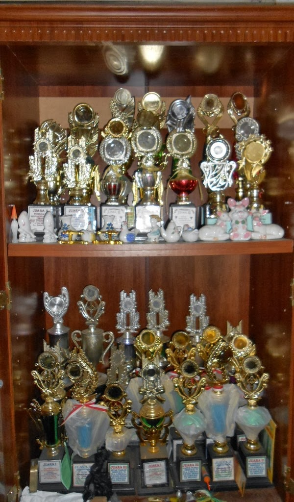 Prestasi Siswa/i Madrasah Ibtidaiyah Nurul Huda Dayo Tandun