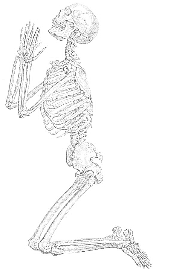 Coloring Pages Skeleton Free Printable Coloring Pages