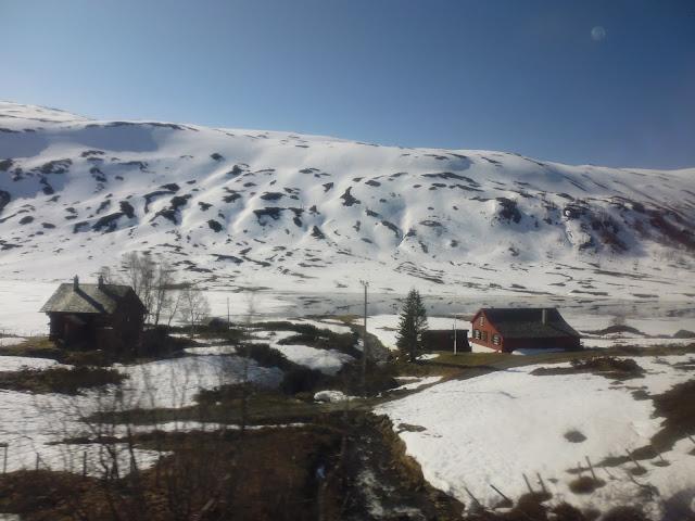 Paisajes durante el trayecto en tren de Oslo a Bergen