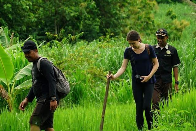 Wisatawan Mancanegara Minati Jelajah Alam di Desa Wisata Tinalah
