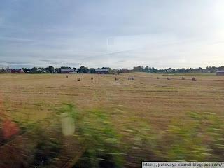 шведская ферма