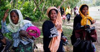 Myanmar army stepped up its campaign against the Rohingya