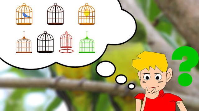 How To Choose The Best Cage For Your Parakeet
