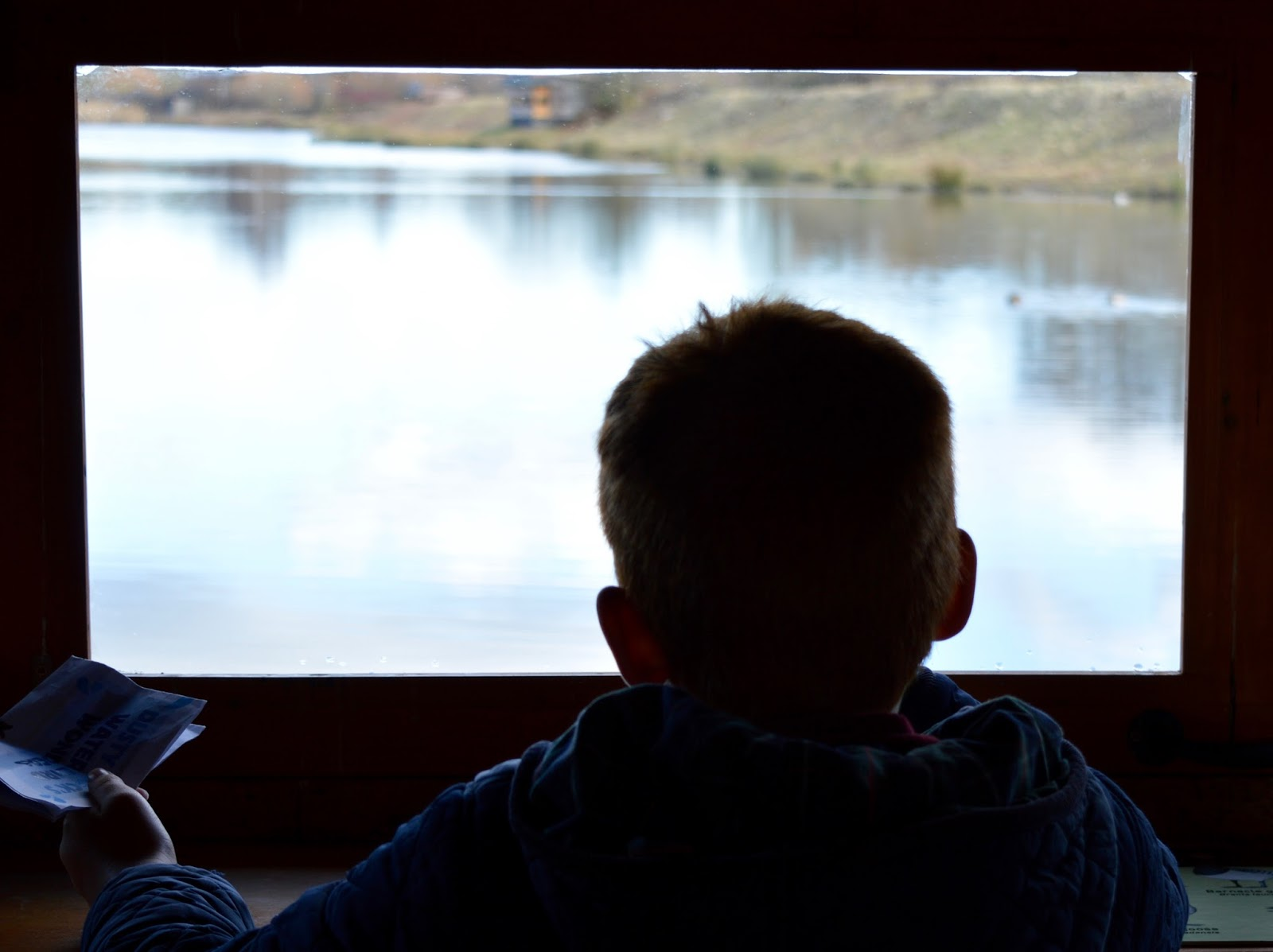 WWT Washington Wetland Centre | An Accessible North East Day Out for the Whole Family - bird spotting from bird hide