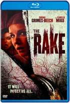 The Rake (2018) HD 720p Subtitulados