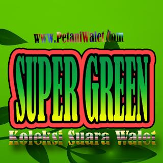 Suara Walet Super Green