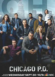 Chicago P.D. Temporada 3 Online