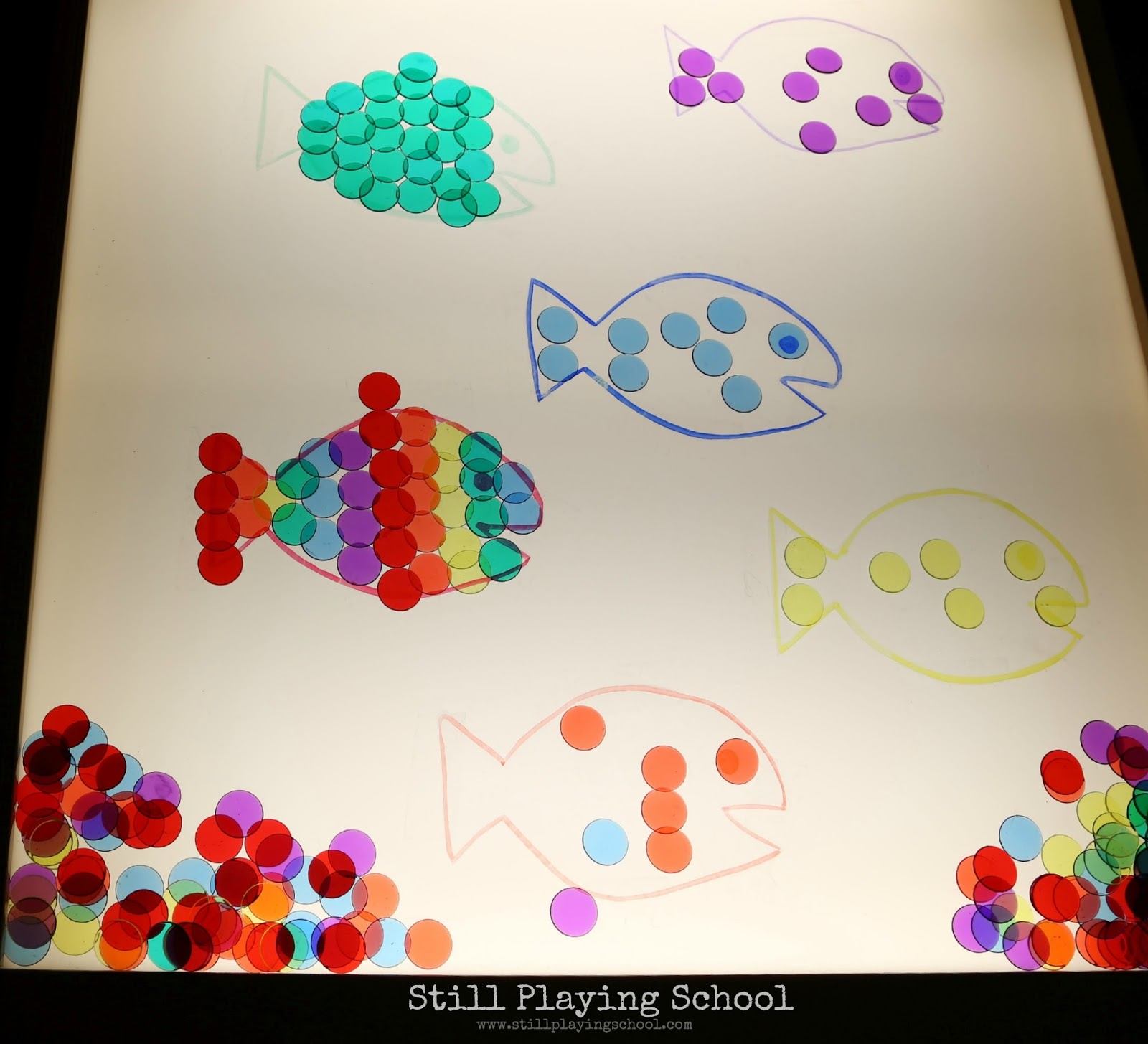 Fish Color Matching On The Light Table Still Playing School