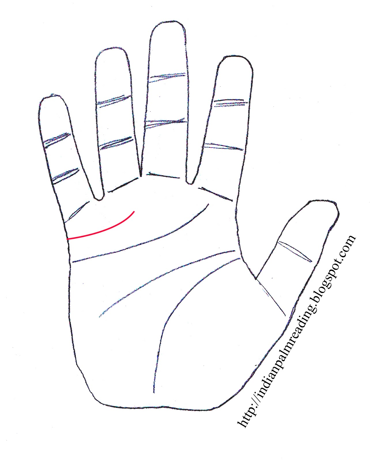 Long Marriage Line Palmistry   INDIAN PALM READING - ASTROLOGY