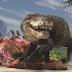 Conheça Razana, o crocodilo gigante que enfrentava os dinossauros