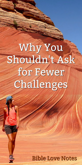 Challenges Can Be Opportunities for Gaining Character and Wisdom
