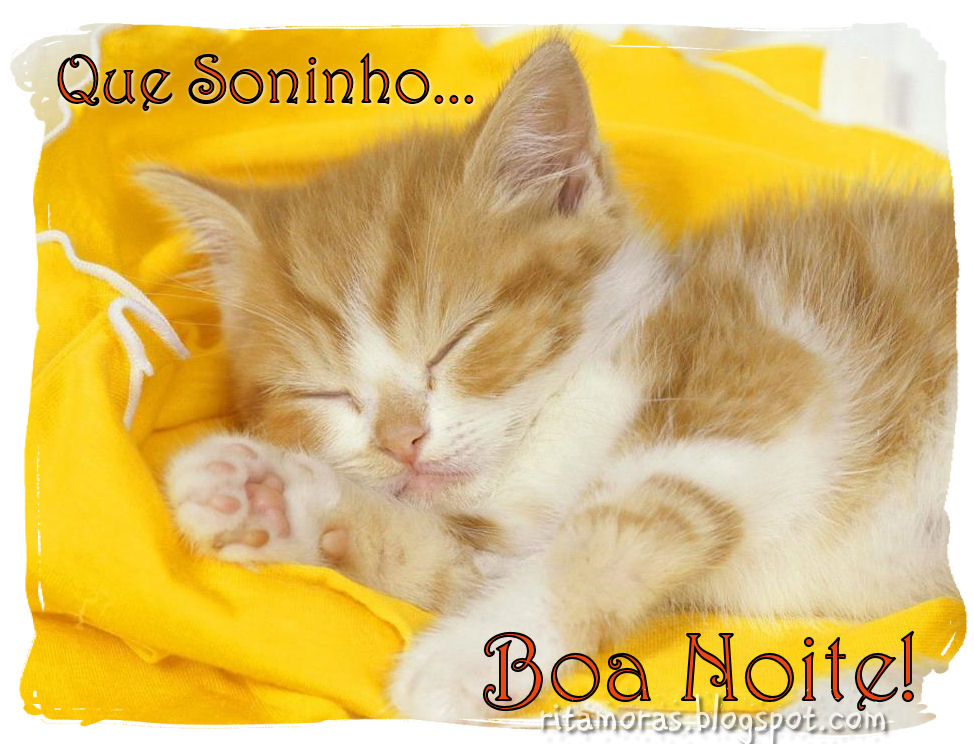 Bem-Vindos♥♥♥♥♥♥♥♥♥♥♥♥.: Mensagens De Boa Noite
