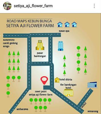 Setiya Aji Flower Farm Kabupaten Semarang