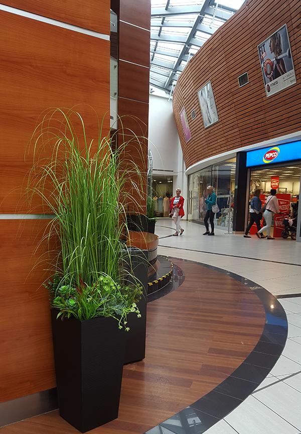 Nasze trawy w Galerii Handlowej Marino, we Wrocławiu