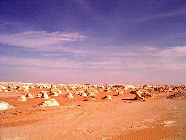Foto Oasis de Farafra 1