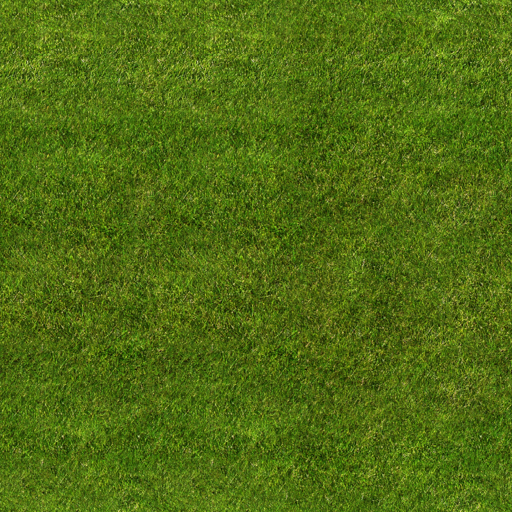 grass background texture - photo #38