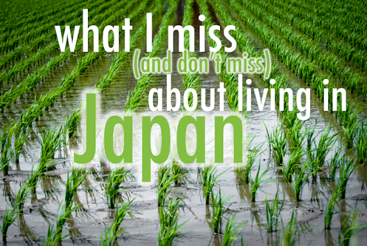 What I Miss (and Don't Miss) About Living in Japan | Surviving in Japan: (without much Japanese)