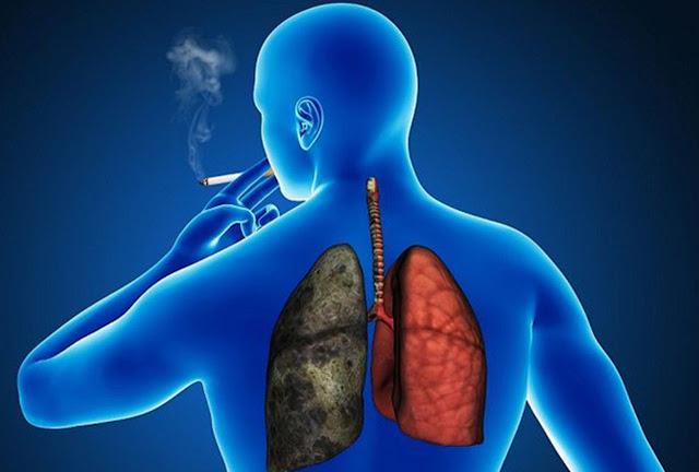 fumar el tabaco afecta los pulmones