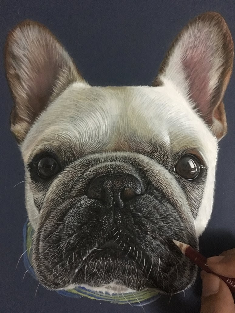 04-Piggy-The-French-Bulldog-Frenchie-Ivan-Hoo-Animals-Translated-to-Realistic-Drawings-www-designstack-co