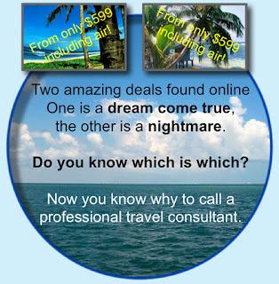 Value Of Travel Professionals