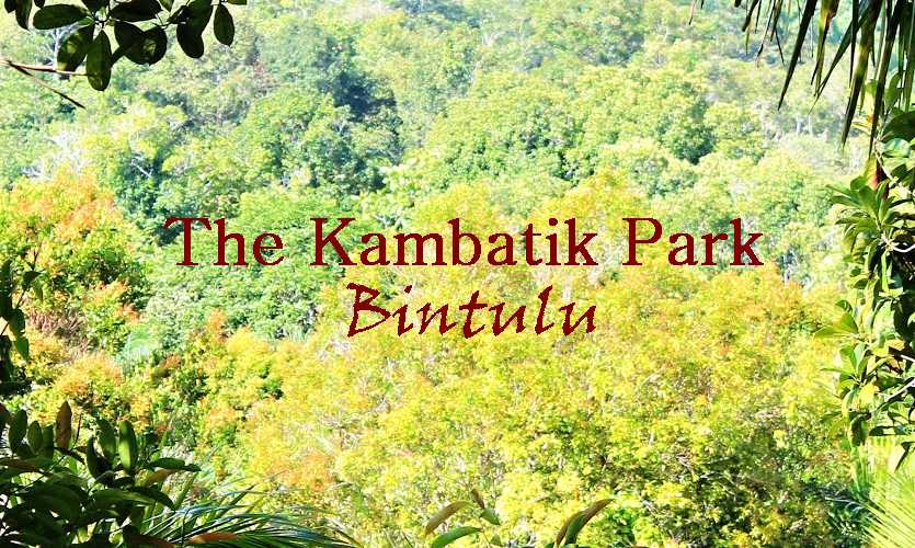 The Kambatik Park, Bintulu.
