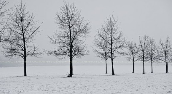 Free Winter Facebook Covers For Timeline