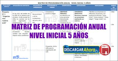 Matriz de programación anual nivel inicial 5 años
