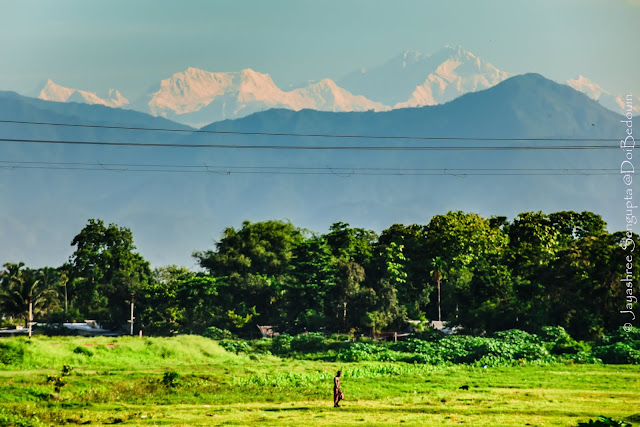 Location: Belakoba, New Jalpaiguri, West Bengal, India. A Himalayan railside view featuring the Kanchenjunga and the Man strolling in the field perched in its lap looking so puny in front of the majestic mountain. @DoiBedouin