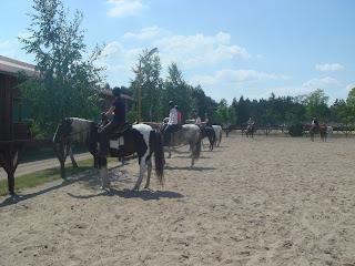 Unkari, El Bronco, Riitta Reissaa, lännenratsastus, Horsexplore