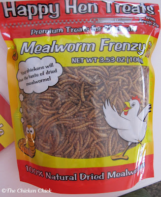 Mealworms are a good source of protein, reportedly containing 49% to 51%. They can be purchased live or dried and can also be farmed very easily at home. During a molt, mealworms are a particularly smart snack choice as re-growing feathers is a very protein-intensive activity.