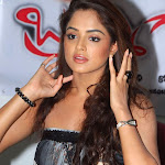 Asmita Sood At Brahmigadi Katha Movie Success Meet Stills