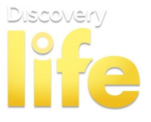 Discovery Life Poland - Hotbird Frequency