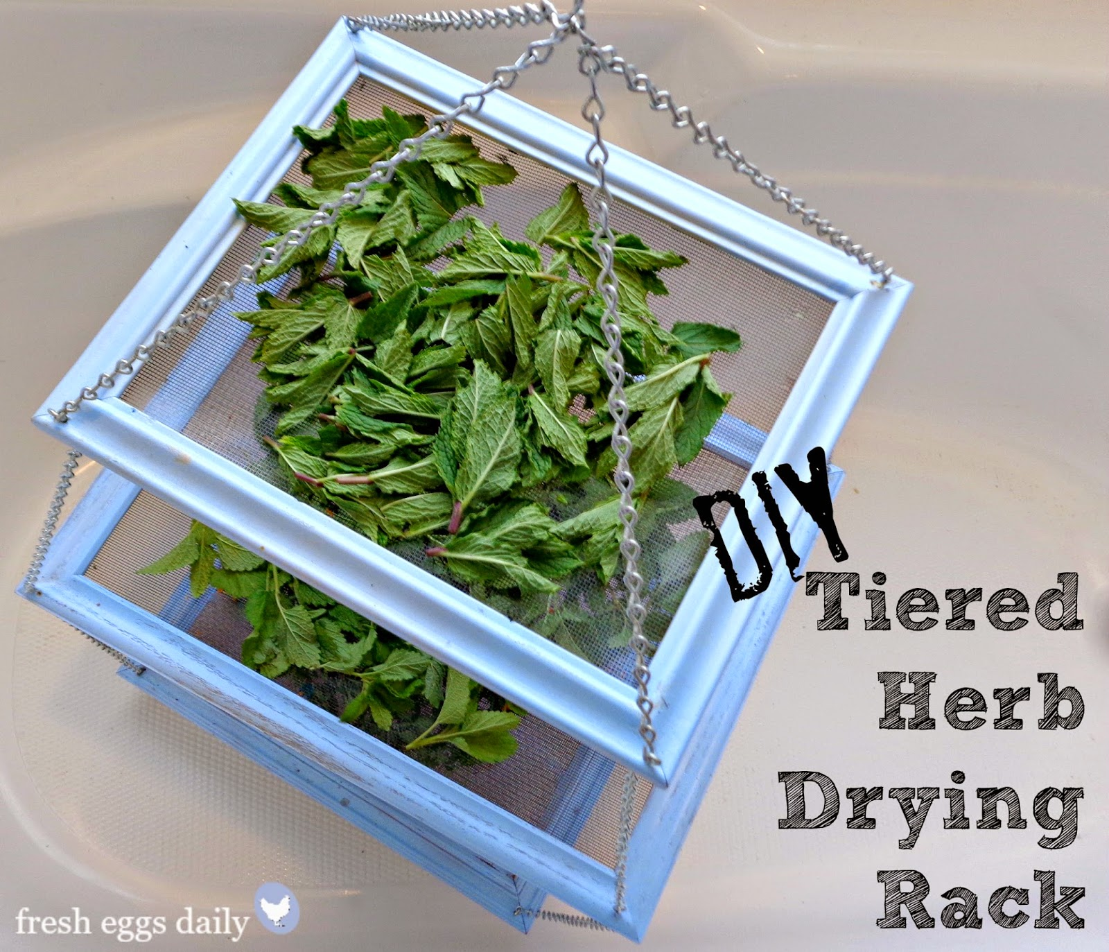 DIY Tiered Herb Drying Rack Using Repurposed Picture Frames | Fresh on