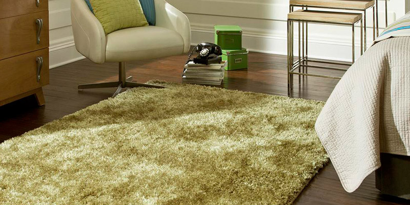 Area Rug Adds A Touch Of Softness To The Hardwood Floor In Bedroom