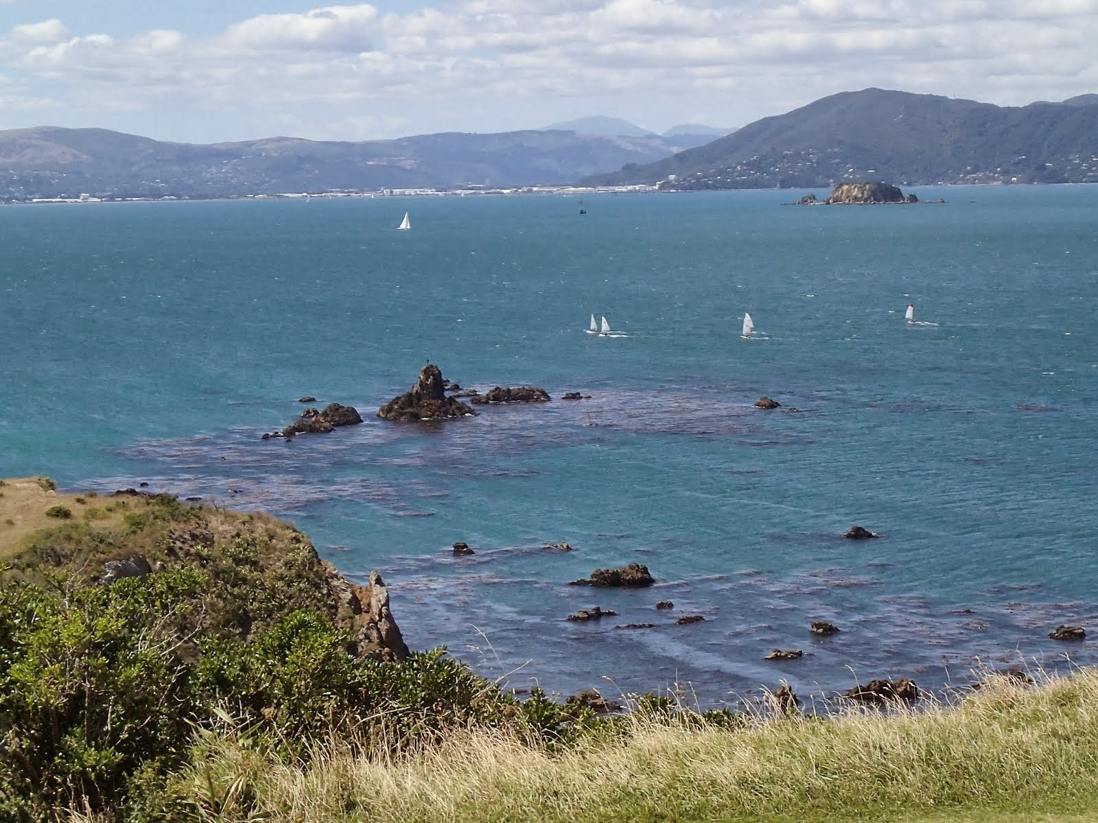 Wellington Harbour looking north from Seatoun and Point Dorset