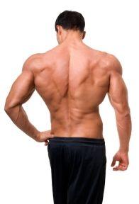 7 Cara Melatih Otot Punggung Menjadi Berotot