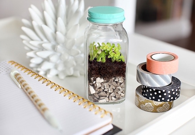 diy terrariums, how to make terrarium, room decor, diy decor, diy room decor, diy, decor, crafts, do it yourself, upcycle projects, recycle projects