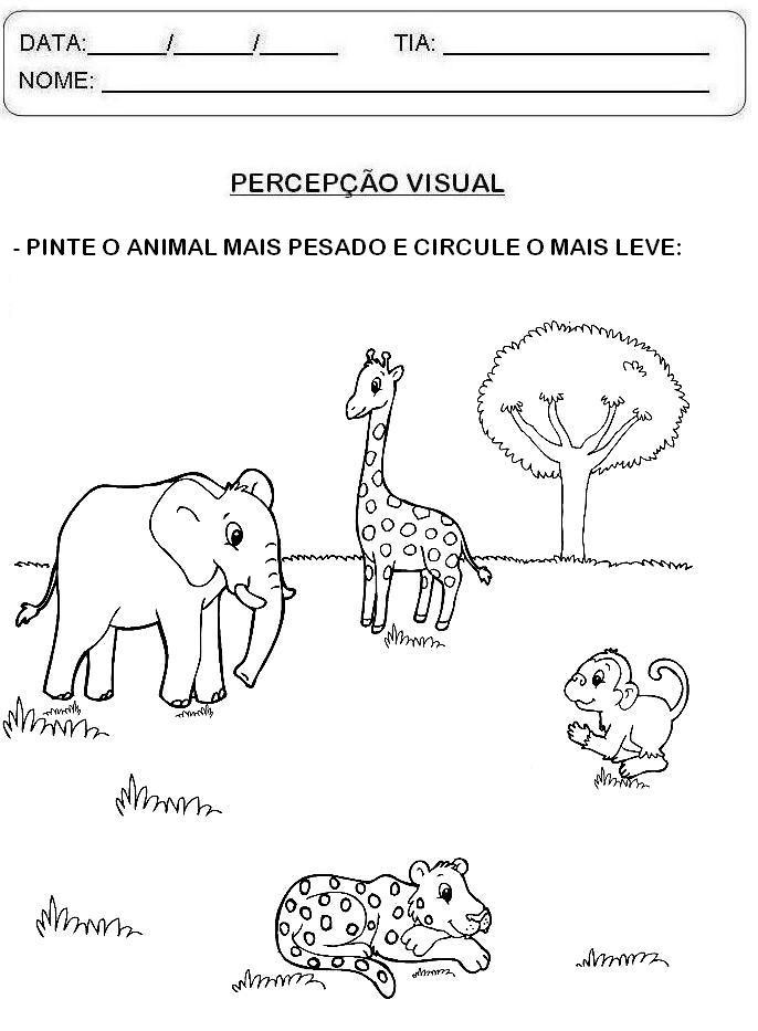 Amiga de brazil 2 - 1 10