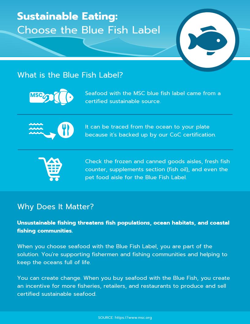 india's best infographics website, india's best infographics blog